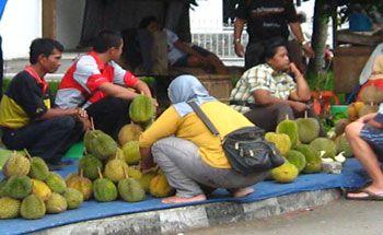 Berburu Durian Di Pangandaran