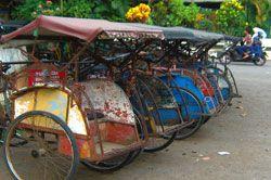 Wisata Desa menggunakan Becak