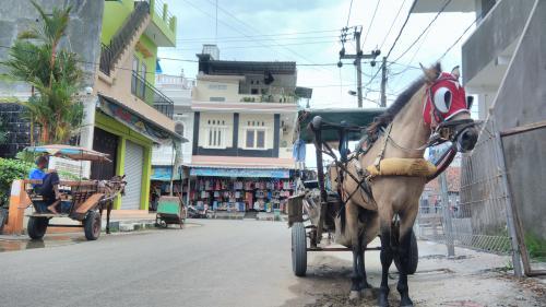 Liburan ke Pangandaran, Yuk Coba Keliling Pantai Naik Delman Wisata