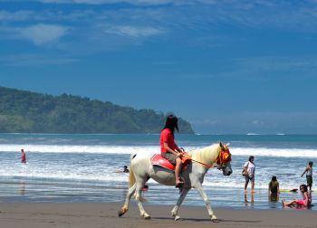 Menikmati Pantai Pangandaran Dari Atas Kuda