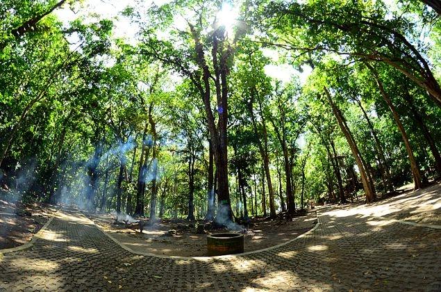 Taman Wisata Alam Pangandaran Dalam Lensa Part Ii