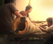 Tradisi Lodong Lebaran Warga Cikembulan