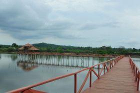 Wisata Hutan Mangrove Batukaras