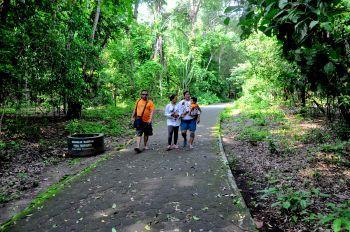Asrinya Jungle Tracking di Cagar Alam