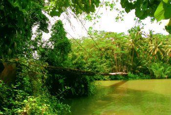 Jembatan Gantung Mandala Cijulang