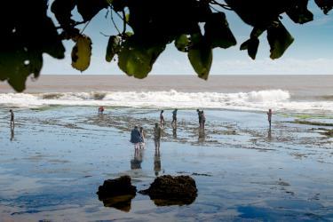 Begini Cara Menikmati Keindahan Pantai Karapyak Pangandaran